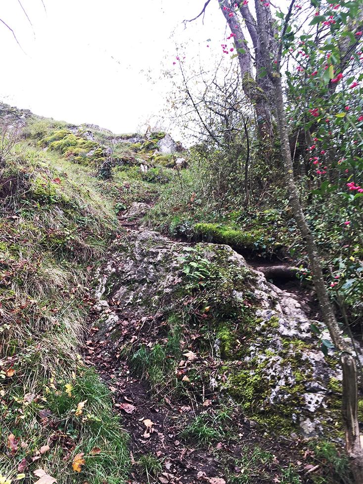 Zie je het pad op de foto? Hierop moest ik een enorm steile  helling afdalen!